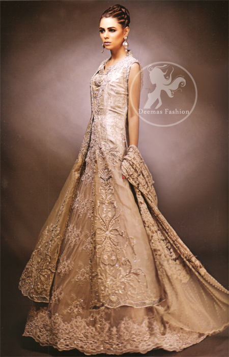 Fawn Front Open Gown Lehnga
