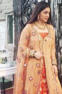 Persian Red Inner Gold Sand Gown