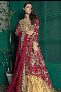 Red Back Train Maxi Dupatta – Golden Sharara