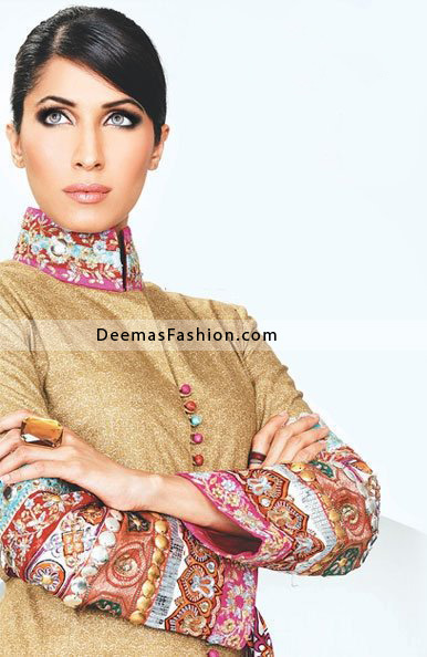 Pakistani Fashion Clothes Light Golden Embroidered Dress